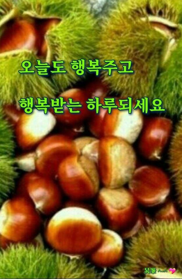 KakaoTalk_20200915_120008051.jpg