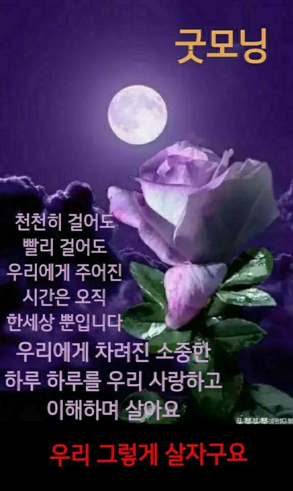 KakaoTalk_20210115_072938064.jpg