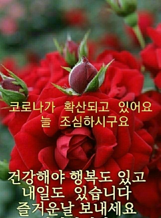KakaoTalk_20201218_071845392.jpg