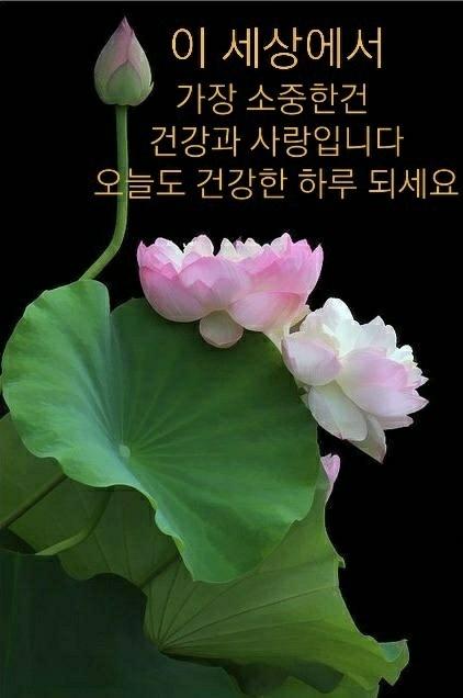 KakaoTalk_20210626_110637250.jpg