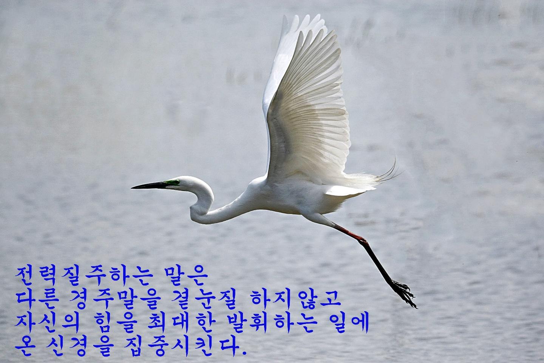KakaoTalk_20210114_064443090_03.jpg