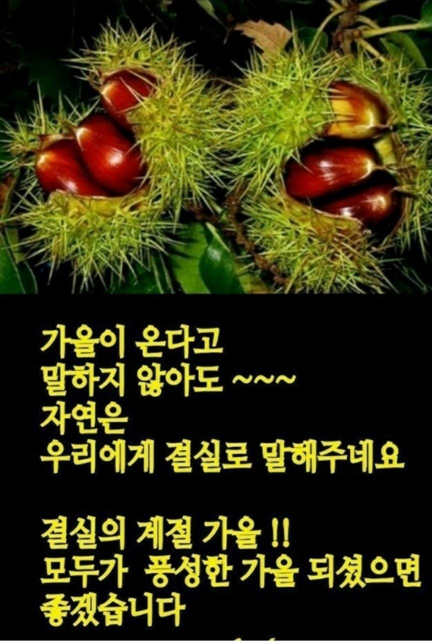 KakaoTalk_20210907_073503646.jpg