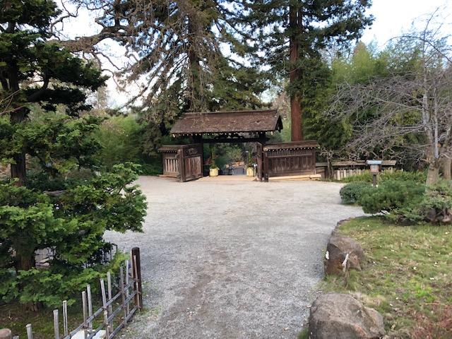 Hakone Gardens_2018_16.jpg