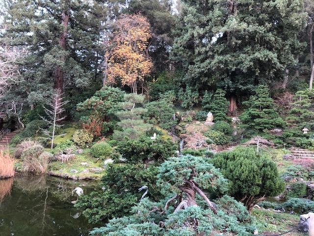 Hakone Gardens_2018_14.jpg