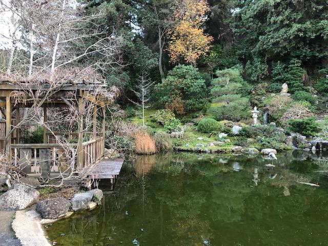 Hakone Gardens_2018_10.jpg