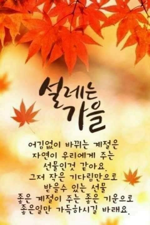 KakaoTalk_20200924_063448199_02.jpg
