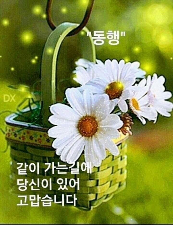KakaoTalk_20210331_093831055.jpg