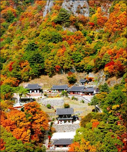 가을2.jpg