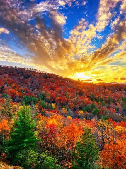 가을7.jpg
