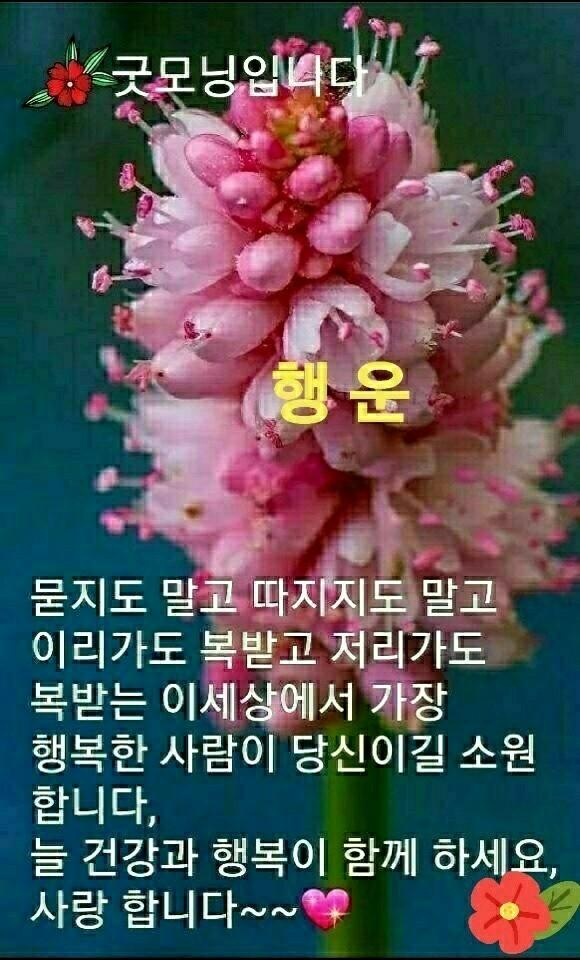 KakaoTalk_20210403_080217201.jpg