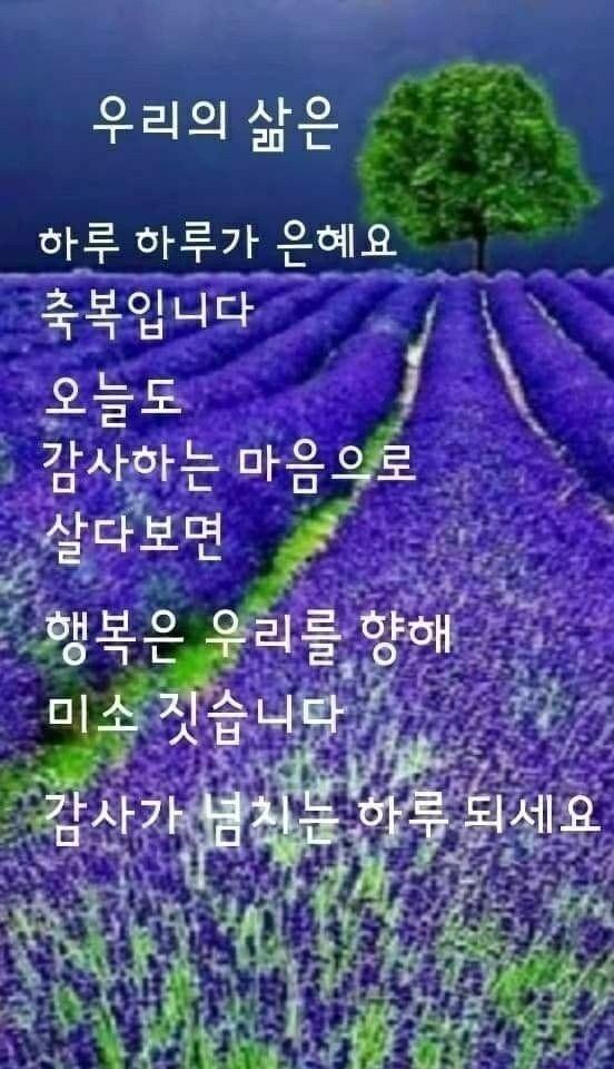 KakaoTalk_20211011_082225954.jpg