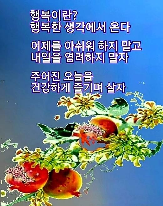 KakaoTalk_20210925_111541519.jpg